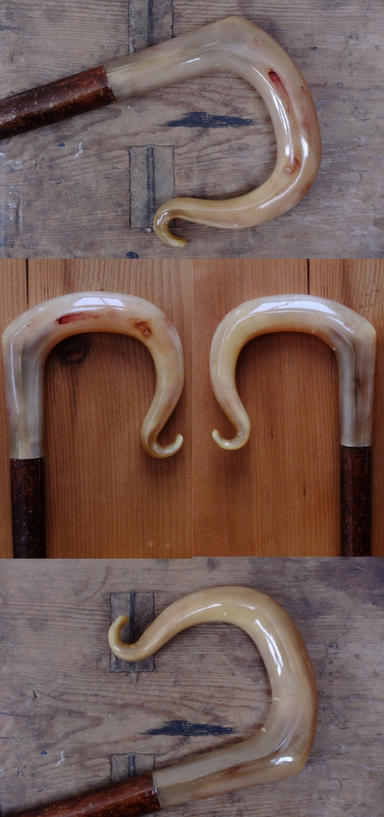 Rams Horn Crook 1