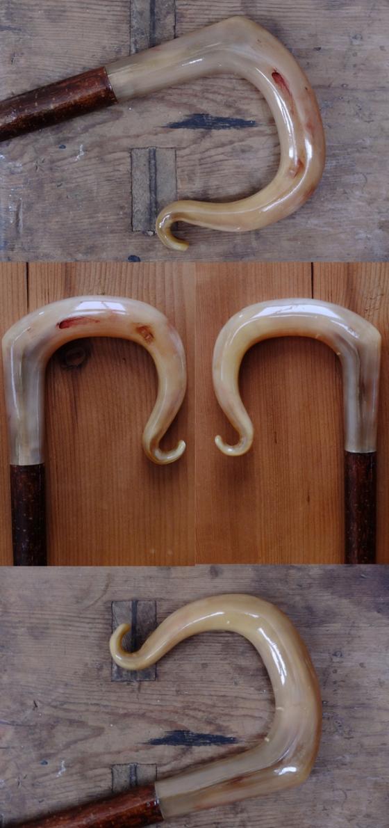 Rams Horn Crook 1
