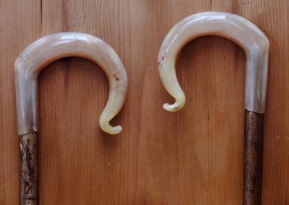 Rams Horn Crook 3