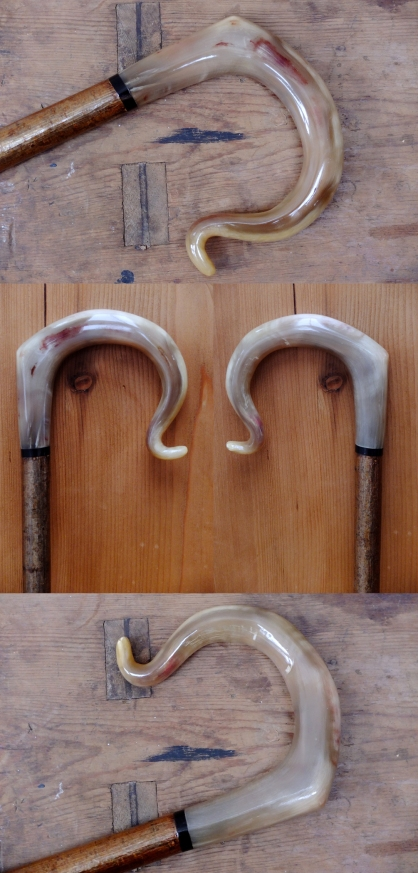 Rams Horn Crook 4