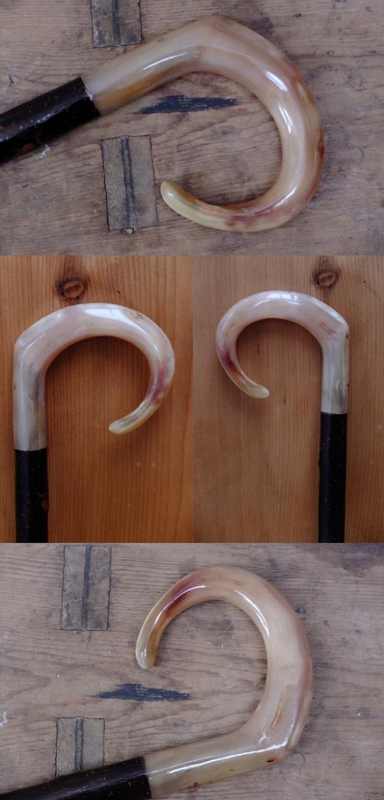 Rams Horn Market Stick