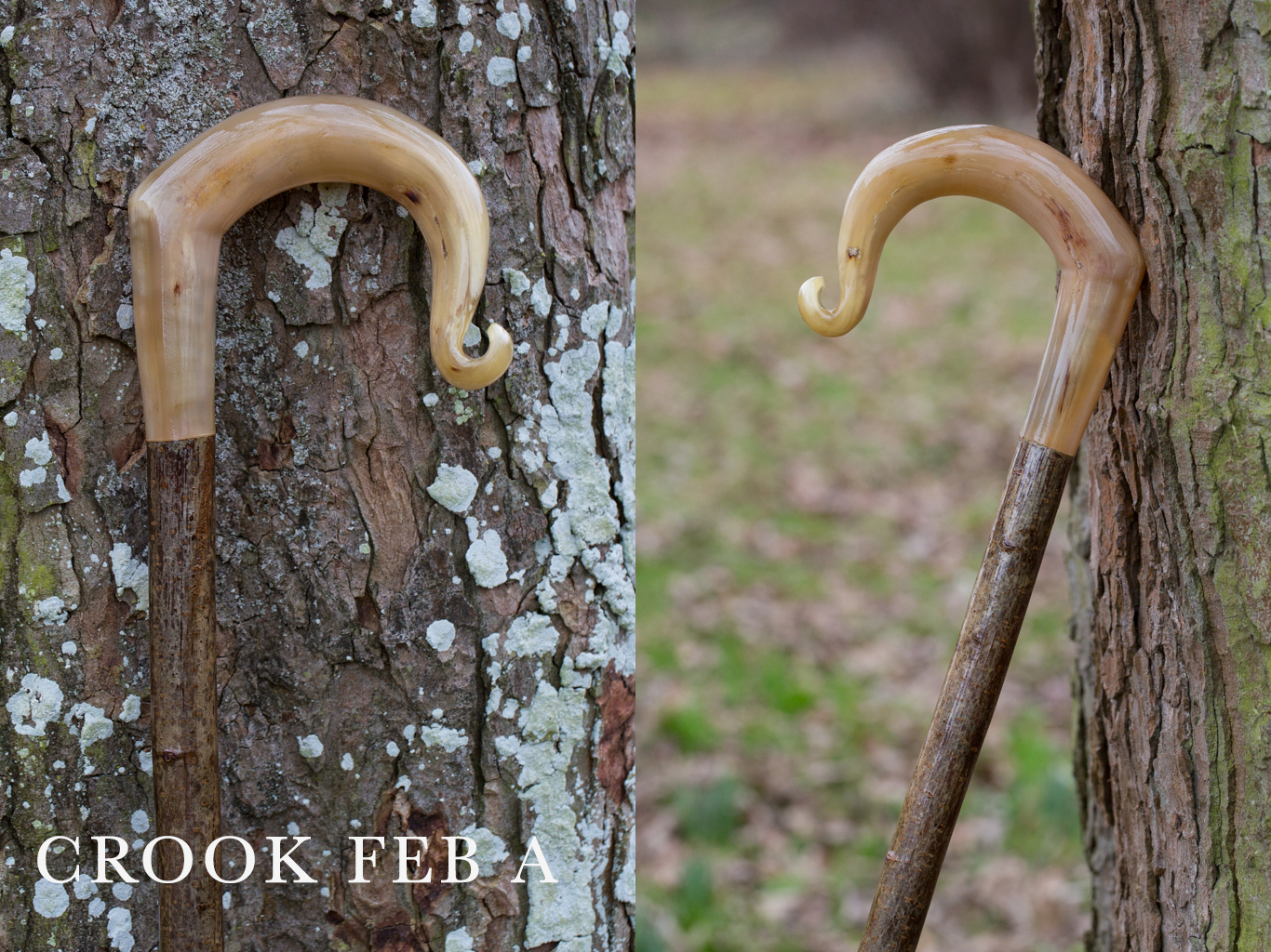crook-feb-a