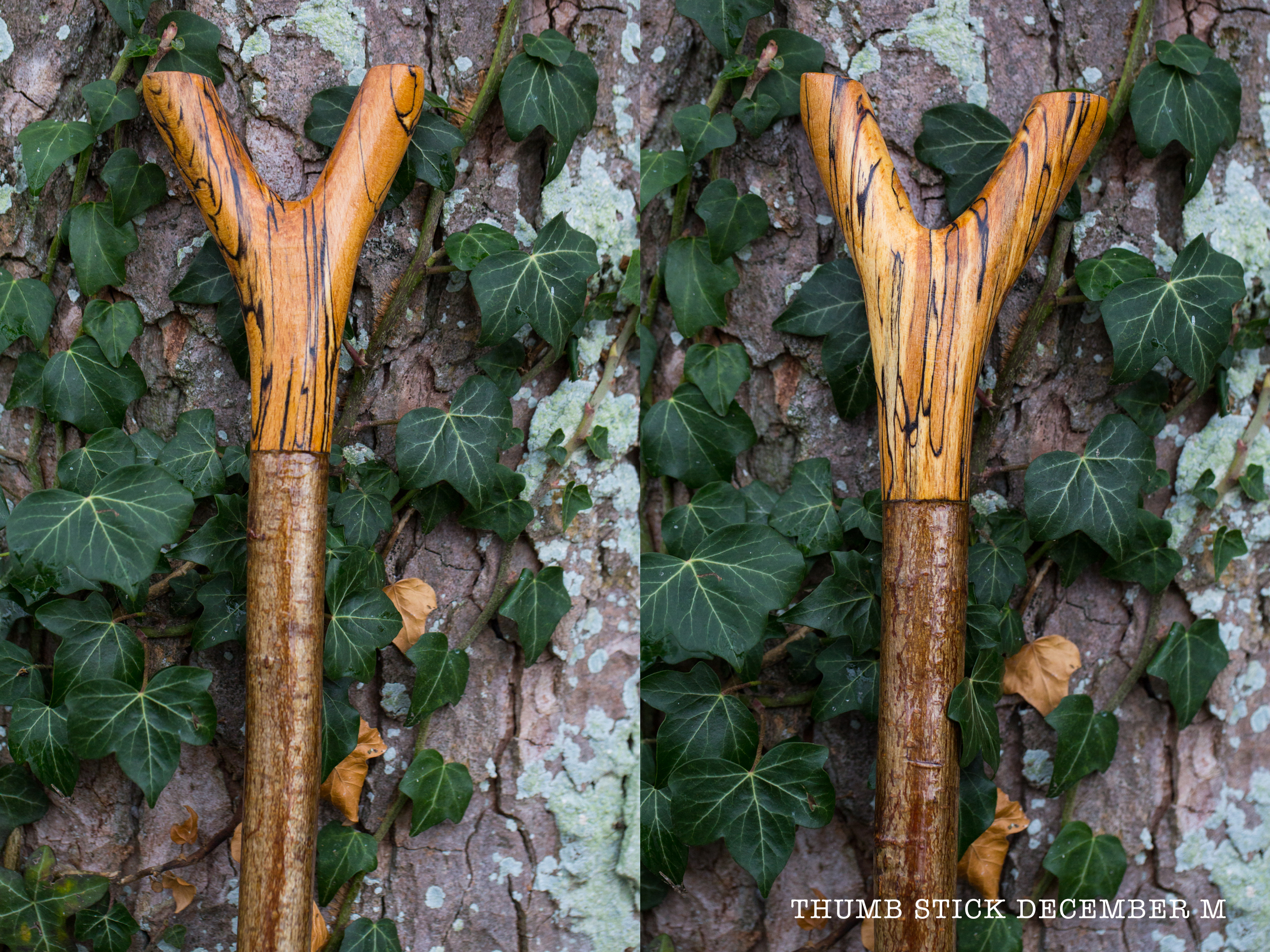 AAA Thumb Stick M