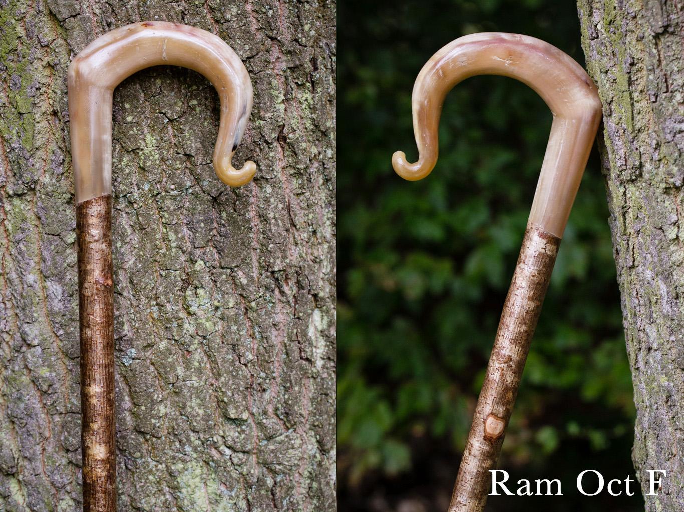 F Ram Oct