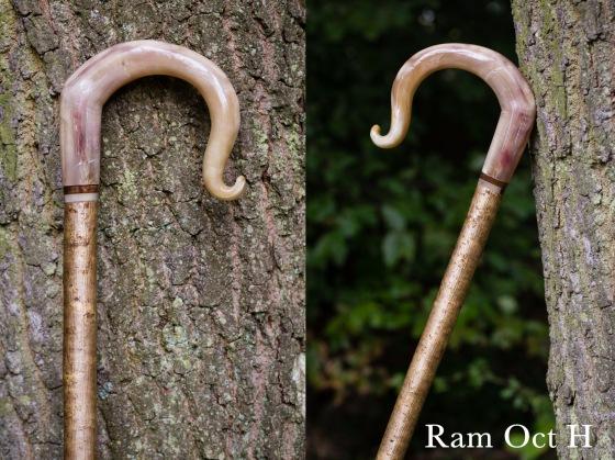 H Ram Oct