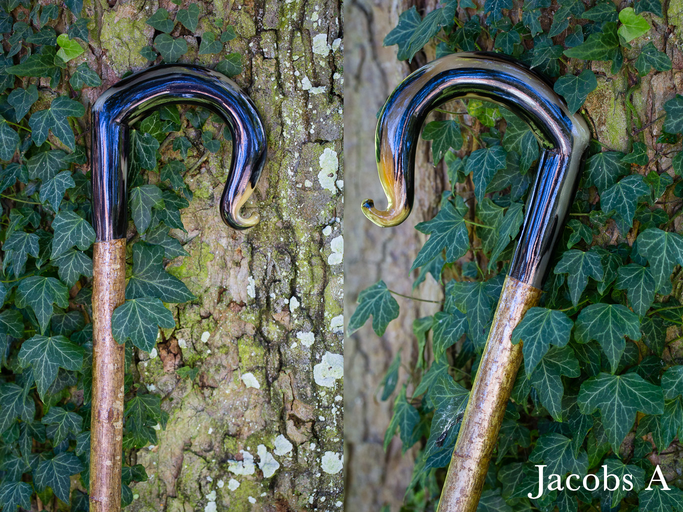 Jacobs Crook A