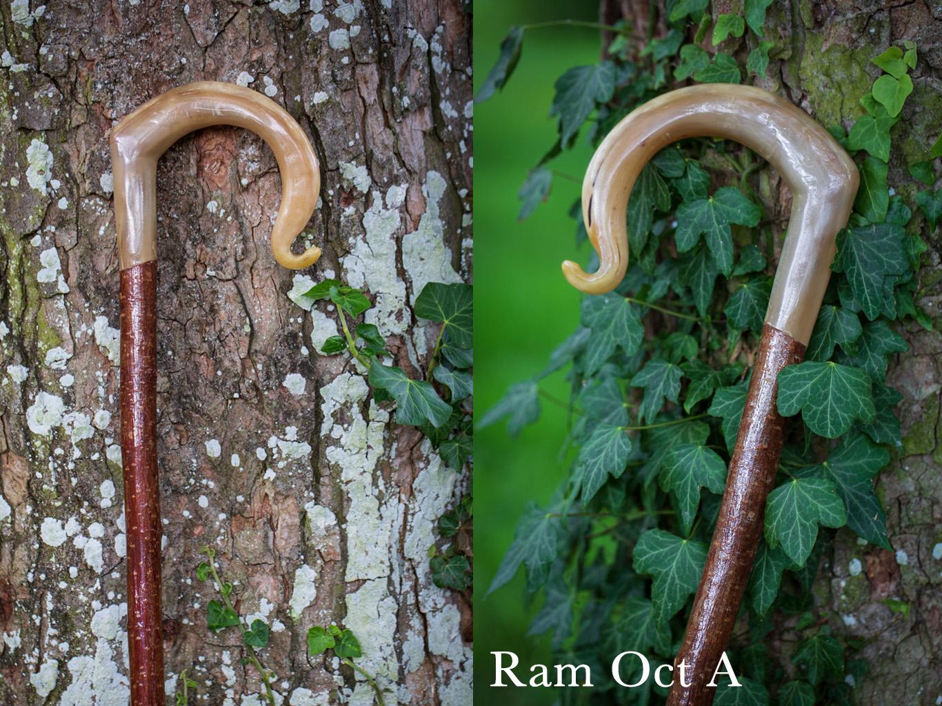 Ram Oct A