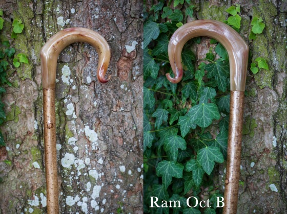 Ram Oct B