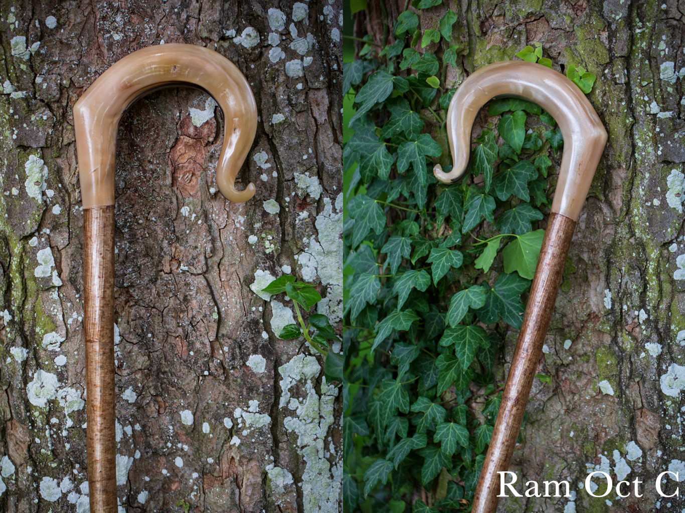 Ram Oct C